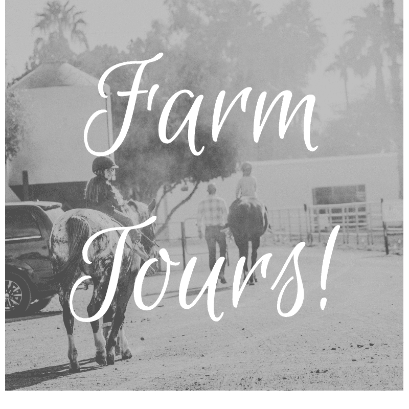Copy of Farm Tours 2019